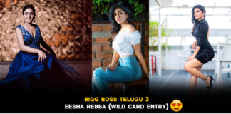 bigg boss telugu wild card entry