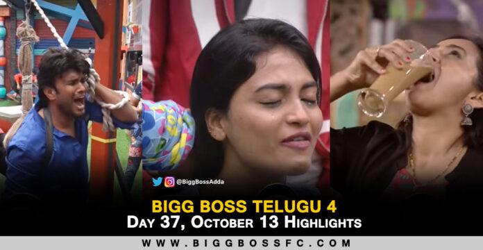 bigg boss telugu 4 highlights